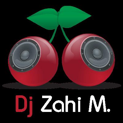 לוגו איכות מלאה צחי משיח (1)